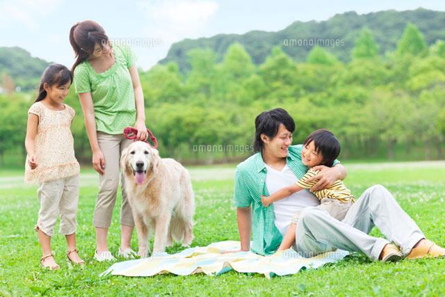 犬 家族 幸せ 公園