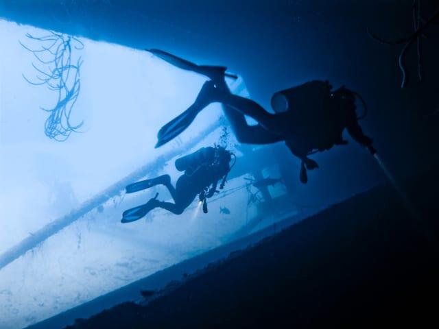 海中を散策するダイバー